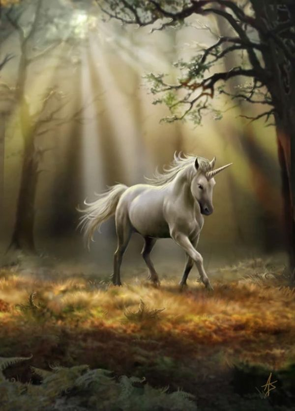 Anne Stokes Glimpse of a Unicorn Greeting Card